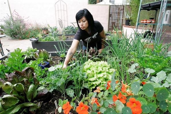 Для жителей России садоводство является не увлечением, а работой