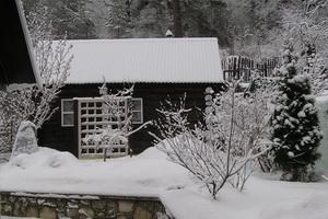 Работа в саду в январе: календарь садовода-огородника