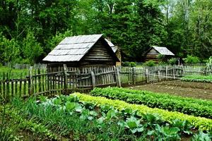 Знаки зодиака для садовода и огородника