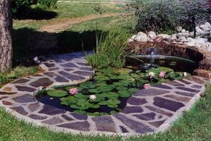 Декоративный пруд на даче: выбор места, формы и размера