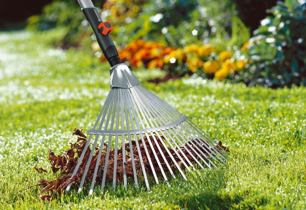 Уход за газоном: полив, стрижка, удобрение и защита