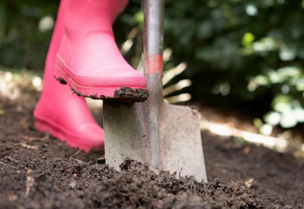 Основные свойства почв России и их характеристика